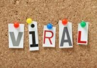 Etkileşim oranınızı artıracak viral videoların ortak özellikleri