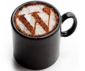 2015'in en iyi 5 ücretsiz WordPress teması